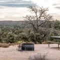 Campsite with juniper.- Horsethief Campground