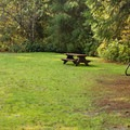 Bikers campground (walk-in).- Porpoise Bay Provincial Park Campground