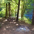 Typical campsite in Island Campground along the North Umpqua River.- Island Campground
