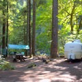 Large campsite in Island Campground.- Island Campground