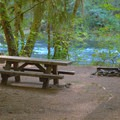 Campsite along the river in Island Campground.- Island Campground