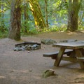 Typical campsite in Island Campground.- Island Campground