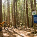 Watch for this right turn immediately after entering the forest. - Westside Mountain Bike Trails: A River Runs Through It