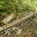 This skinny low bridge has no ride-around option, and while it's pictured dry, it often turns to a swamp. - Westside Mountain Bike Trails: A River Runs Through It
