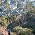 Hiking the Arroyo Trail.- Pedro Point Loop Hike