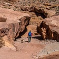 The beginning of the canyon.- Little Wildhorse Canyon Hike