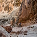 The canyon opens up a bit before turning right and plunging into the narrows again.- Little Wildhorse Canyon Hike