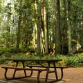 All sites have picnic benches.- Roberts Creek Provincial Campground