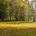 The campground is located next to a park.- Roberts Creek Provincial Campground