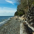 The shore is a beachcomber's heaven.- Roberts Creek Provincial Campground