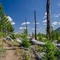 - Pacific Northwest National Scenic Trail Section 7