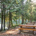 Picnic tables at Alice Lake.- Alice Lake Campground