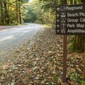 Just inside the park.- Alice Lake Campground