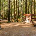 Alice Lake Campground.- Alice Lake Campground