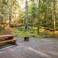 Typical campsite at Alice Lake Campground.- Alice Lake Campground