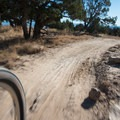 The trails here are smooth and fast.- 18 Road Mountain Bike Trails: PBR