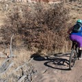 Some nice rock features at Oil Well Flats.- Oil Well Flats Mountain Bike Trail
