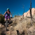 Giant rock monoliths live here.- Oil Well Flats Mountain Bike Trail