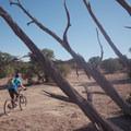 Good Water Rim Trail.- Good Water Rim Mountain Bike Trail