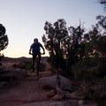 Cutting between the junipers.- Klondike Bluffs Mountain Bike Trails: Jurassic to Dino Flow