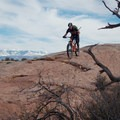Dropping down the navajo sandstone on the MOAB Brand Trails.- MOAB Brand Trails: Rockin' A