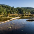 Stump Lake.- Four Lakes Trail Hike