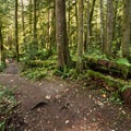 Four Lakes Trail.- Four Lakes Trail Hike
