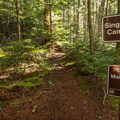 The trail ends abruptly at the mouth of Singing Creek.- Cheakamus Lake Hike