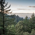 First viewpoint on the Skyline-to-the-Sea Trail.- Skyline to the Sea Trail: Saratoga Gap to Big Basin Headquarters