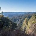 Viewpoint on the Skyline-to-the-Sea Trail.- Skyline-to-the-Sea Hike: Saratoga Gap to Big Basin Headquarters