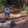 Potable water at Waterman Gap Trail Camp.- Waterman Gap Trail Camp