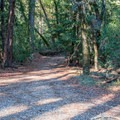 Entrance to Waterman Gap Trail Camp.- Waterman Gap Trail Camp