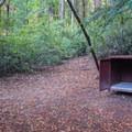 Bear box at Jay Trail Camp.- Jay Trail Camp