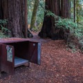 Jay Trail Camp.- Jay Trail Camp