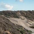 The access trail to Bonny Doon Beach.- Bonny Doon Beach