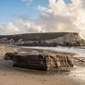 Bonny Doon Beach. - Bonny Doon Beach
