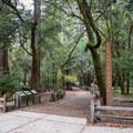 Redwood Trailhead.- Redwood Hiking Trail