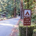 Camp is divided by Highway 236. Tent camping is on one side and RV camping is on the other.- Sempervirens Campground