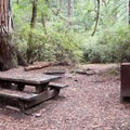 Typical site at Wastahi Campground.- Wastahi Campground