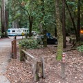 Blooms Creek Campground Entrance.- Blooms Creek Campground