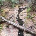 Blooms Creek.- Blooms Creek Campground