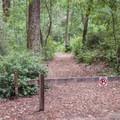 East Ridge Trailhead.- Blooms Creek Campground