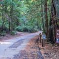 Cabin campground entrance.- Huckleberry Campground