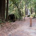 Huckleberry Campground.- Huckleberry Campground