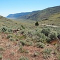 View of the plateau in summer.- Hart Mountain National Antelope Refuge