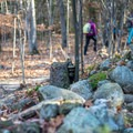 Old stone fences crumble near the start of the hike.- Jay Mountain Hike