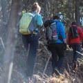 Hiking Jay Mountain.- Jay Mountain Hike