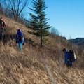 Ridge running to the summit of Jay Mountain.- Jay Mountain Hike