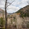Lower White Pine Fork.  - Maybird Lakes Hike