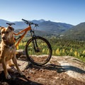 Enjoying the view from the lookout point on Out There.- North Whistler Mountain Bike Trails: Out There